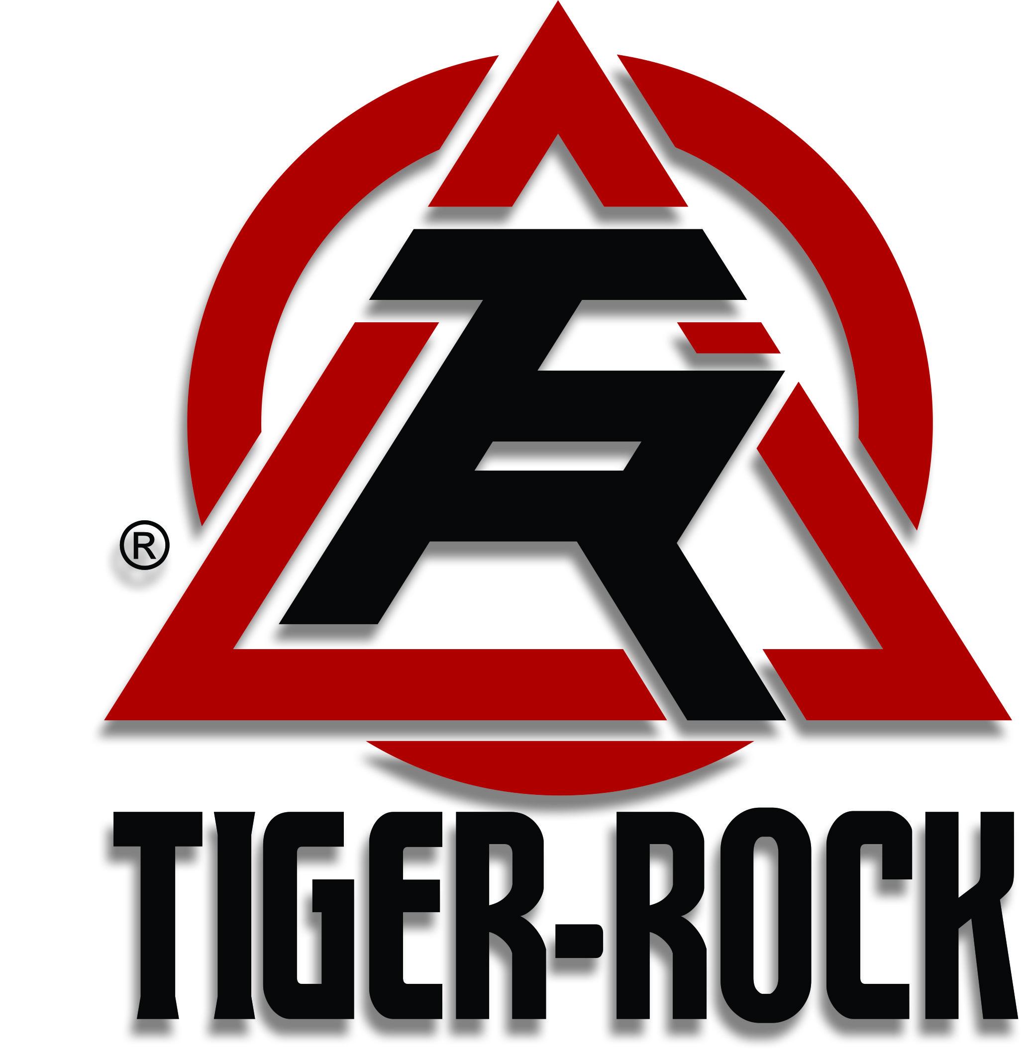history tiger rock martial arts